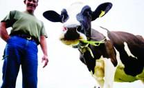 Farm & Table: Thực hiện liên kết tiêu thụ sản phẩm