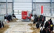 Vijverberg - Sản xuất sữa nhờ robot