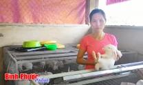 Bình Phước: Lợi kép từ nuôi thỏ công nghiệp
