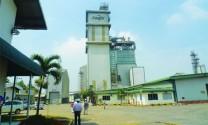 Cargill: Khẳng định thương hiệu mạnh