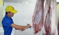 Hà Nội: 56% sản lượng thịt giết mổ không được kiểm soát