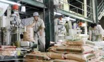 Sẽ đình chỉ cơ sở sản xuất TĂCN kém chất lượng