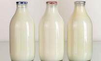 Đơn Dương (Lâm Đồng): Sản lượng sữa bò tươi toàn huyện đạt trên 50 tấn/ngày
