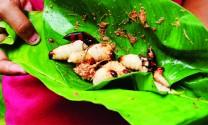 Đuông dừa - Đặc sản và đặc sắc
