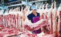 Giá sản phẩm chăn nuôi bình quân tháng 7/2015