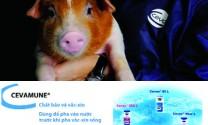 Ceva Animal Health Viet Nam: Thương hiệu vượt trội