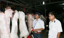 Thành phố Vũng Tàu: Bất cập trong quản lý giết mổ gia súc, gia cầm