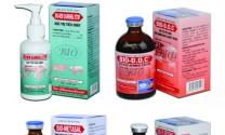 Phòng trị hiệu quả dịch tiêu chảy cấp ở heo