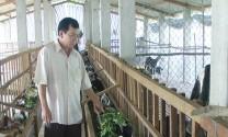 Ba Tri (Bến Tre): Các mô hình sản xuất nông nghiệp hiệu quả