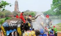 5 lễ hội động vật đặc sắc