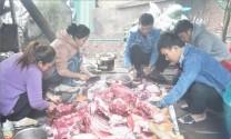 Thừa Thiên - Huế: Thương hiệu cho thịt bò A Lưới