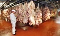 Canada: Thịt lợn tiếp cận thị trường Ấn Độ