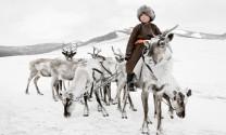 Những người chăn tuần lộc cuối cùng trên thảo nguyên Mông Cổ