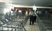 Hoài Ân (Bình Định): Khánh thành Trang trại chăn nuôi heo công nghệ cao