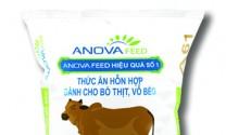 Thức ăn nuôi bò