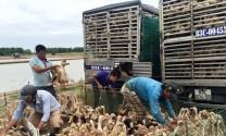 Bạc Liêu: Chủ động phòng chống dịch bệnh vào đầu mùa mưa