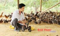 Khá từ nuôi gà an toàn sinh học