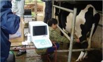 Công nghệ sinh sản trong chăn nuôi?