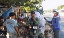 Phú Yên: Heo bất ngờ tăng giá, người nuôi lãi 600.000 – 800.000đ/con