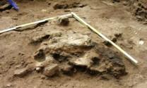 Phát hiện di tích chuồng trại chăn nuôi 5000 năm tuổi