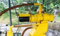 Manh nha các công nghệ mới xử lý chất thải trong chăn nuôi