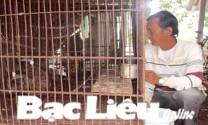 Nguyễn Ngọc Danh: Làm giàu từ mô hình sản xuất đa con