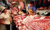 Ngành chăn nuôi Thế giới: Cơ hội và thách thức