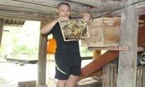 Hà Giang: Nuôi ong lấy mật, nghề mới nhiều triển vọng ở Yên Hà