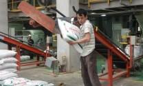Doanh nghiệp NK thức ăn chăn nuôi: Mong chờ thủ tục mới theo Cơ chế một cửa Quốc gia