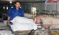 Công ty CP Phát triển nông lâm Hà Tĩnh: Tiên phong trong đầu tư vào nông nghiệp