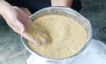 Quy chuẩn kỹ thuật quốc gia lĩnh vực thức ăn chăn nuôi
