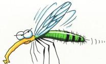 Muỗi cũng phải sợ
