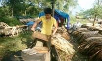 Hà Giang: Cơ hội cho người nuôi ong từ việc thành lập Hội sản xuất và kinh doanh Mật ong trên Cao nguyên đá