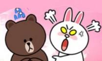 Thỏ và gấu