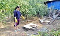 """Quảng Ninh: Xử lý chất thải trong chăn nuôi """"Khó mà không khó"""""""