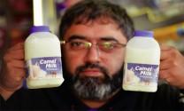 Sữa lạc đà - xu hướng sữa mới ở Mỹ