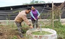 Bắc Giang: Mở rộng quy mô chăn nuôi nhờ hầm khí biogas
