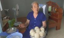 Đồng Tháp: Một hộ ở huyện Tam Nông nuôi chim yến thành công