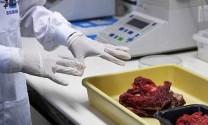 Xem xét ngừng nhập thịt từ Brazil