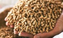 Việt Nam nhập khẩu hơn 19 triệu tấn nguyên liệu TĂCN