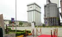 Công ty TNHH Cargill Việt Nam : Tìm giải pháp phát triển chăn nuôi heo