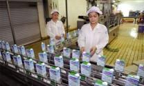 """Ngành sữa Việt Nam: Ước mơ """"trời tây"""""""