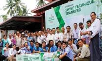 Greenfeed Myanmar: Chuyển giao kỹ thuật chăn nuôi heo cho khách hàng