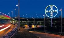 Công ty Bayer Việt nam tuyển dụng