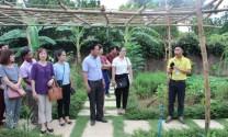 Cơ hội phát triển nông nghiệp bền vững