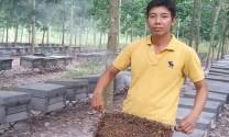 Người gắn bó với nghề nuôi ong mật
