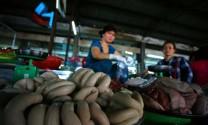 """""""Cấm cửa"""" nội tạng động vật vào Việt Nam"""