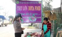 Mô hình nuôi lợn bằng thảo dược - hướng đi mới trong phát triển chăn nuôi