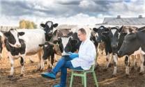 Công nghệ định hình nền chăn nuôi