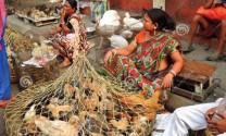 """Ấn Độ Gia cầm """"cứu"""" ngành chăn nuôi"""